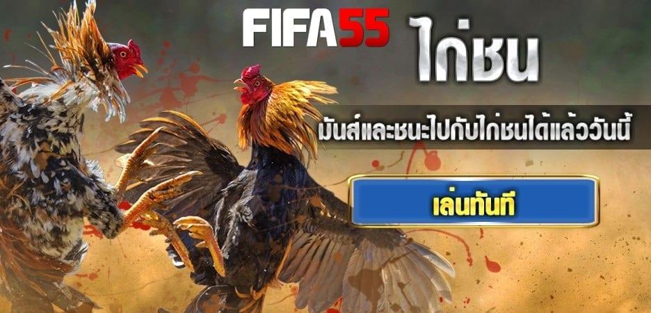 เว็บพนันไก่ชนไทย